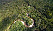 Brasile Rio delle Amazzoni