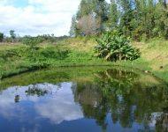 Guatapora Iguacu3