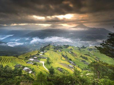 Vietnam territorio risaie